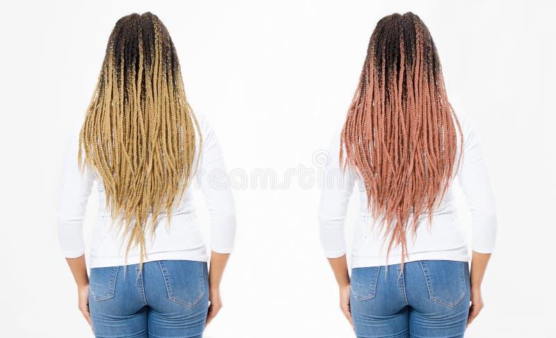 Dreadlocks de rose de femme de plan rapproché et tresses Afro Vue arrière de dos de coiffure de fille d'afro-américain d'isolemen images libres de droits