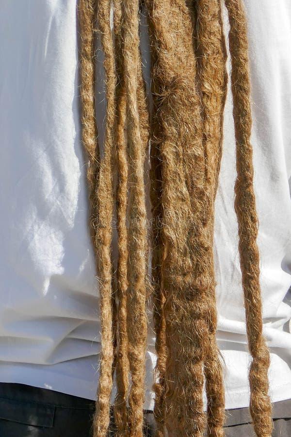 Dreadlocks fryzura mężczyzna Włosiany dreadlocks reggae przełaz obrazy stock