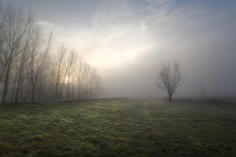 Download Dream 1. stock image. Image of postcard, abandoned, color - 12616971