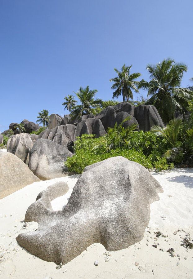 Download Dream Beach stock image. Image of dream, digue, exploration - 2156849