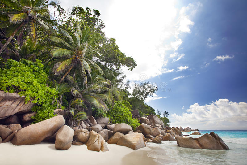 Download Dream Beach - Anse Georgette Stock Image - Image of beautiful, relax: 39502681
