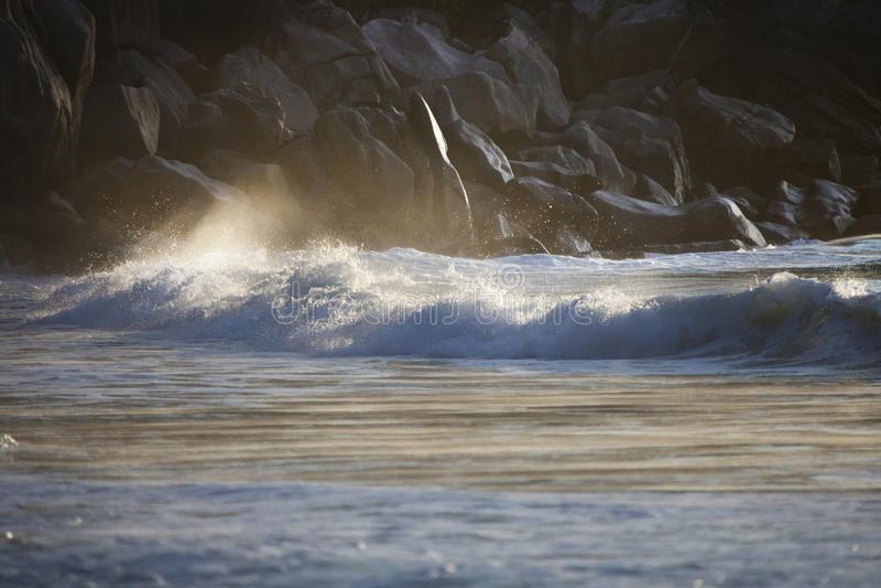Download Dream Beach - Anse Georgette Stock Photo - Image of rock, granite: 39502876