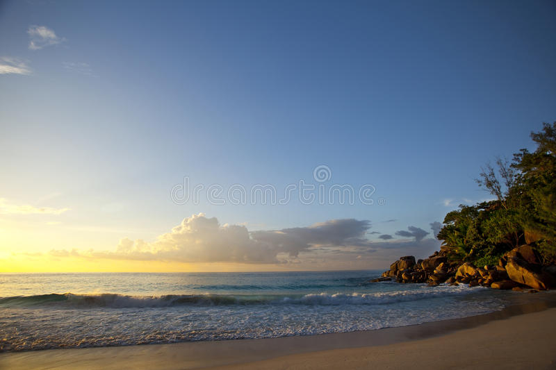 Download Dream Beach - Anse Georgette Stock Image - Image of beach, nature: 39502899