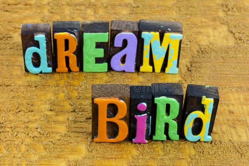 Dream bird freedom big  imagination happiness fantasy adventure dreamer. Dream bird freedom and big imagination happiness fantasy adventure dreamer word stock image