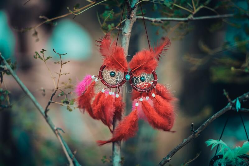 Dream catcher in the shape of an owl with red feathers hanging on a tree royalty free stock photo