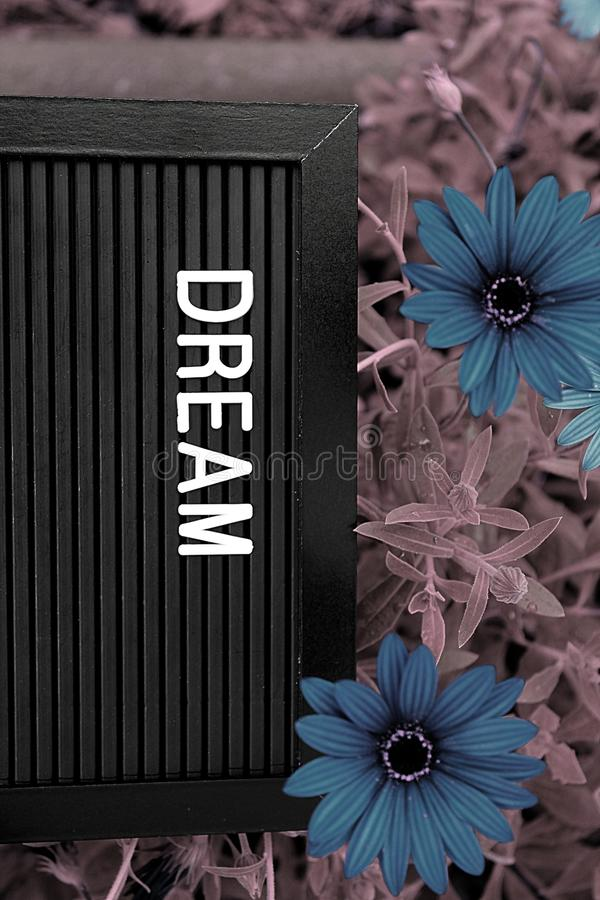 Dream concept - Isolated text on black background with colorful flowers. Dream concept - Personal development - Isolated text on black background with colorful royalty free stock image