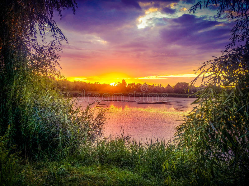Dream fantasy landscape view of danube delta and blue colored dramatic sky at sunset. Overfiltered conceptual dream fantasy landscape in danube delta in summer royalty free stock photos
