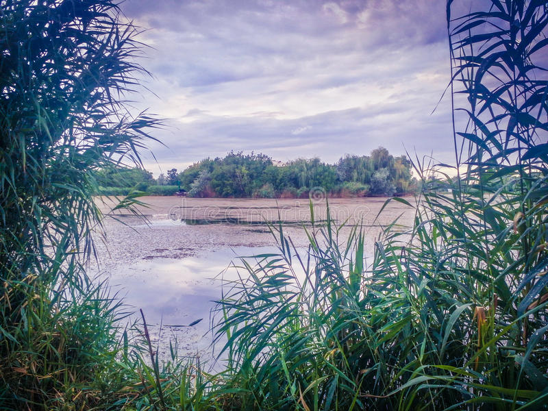 Dream fantasy landscape view of danube delta and blue colored dramatic sky at sunset. Overfiltered conceptual dream fantasy landscape in danube delta in summer royalty free stock photo