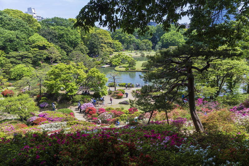 Dream Garden editorial stock image. Image of scenes, pond - 47249424