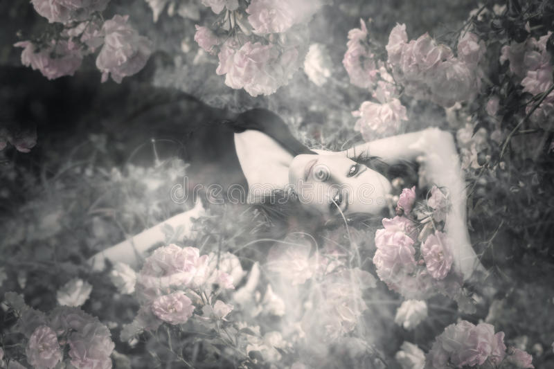 Dream of roses. Beautiful young woman in roses dream stock photo