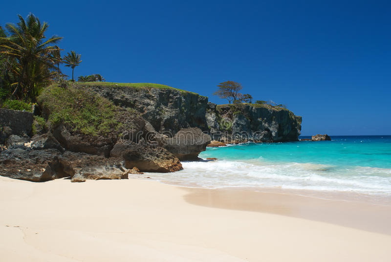 The dream tropical beach