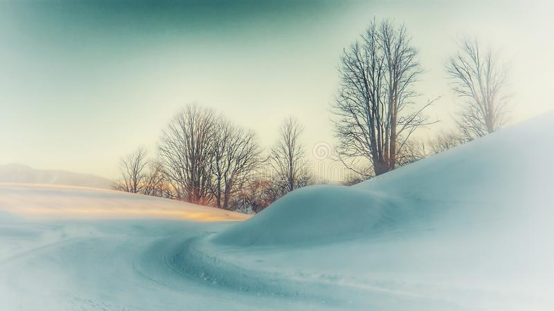 Dream winter landscape royalty free stock photography