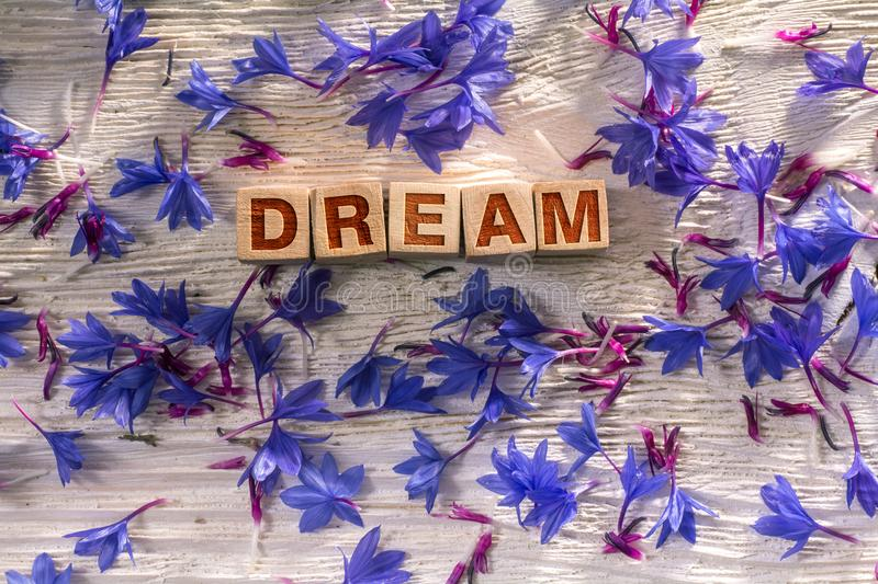 Dream on the wooden cubes. Dream written on the wooden cubes with blue flowers on white wood stock photo