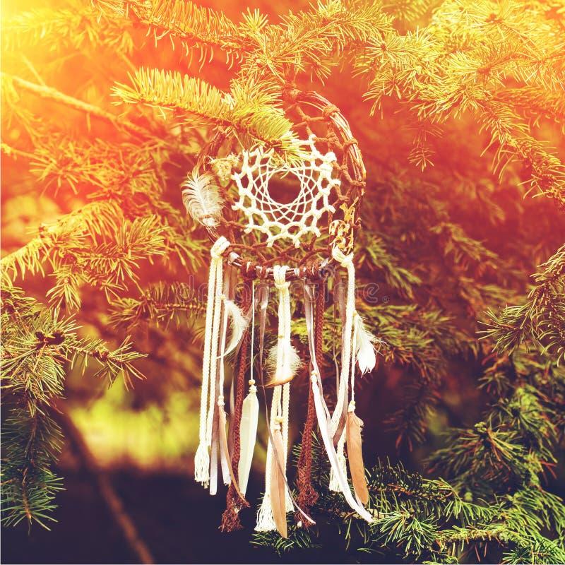 Dreamcatcher amerikansk infödd amulett på solnedgång shaman royaltyfria foton