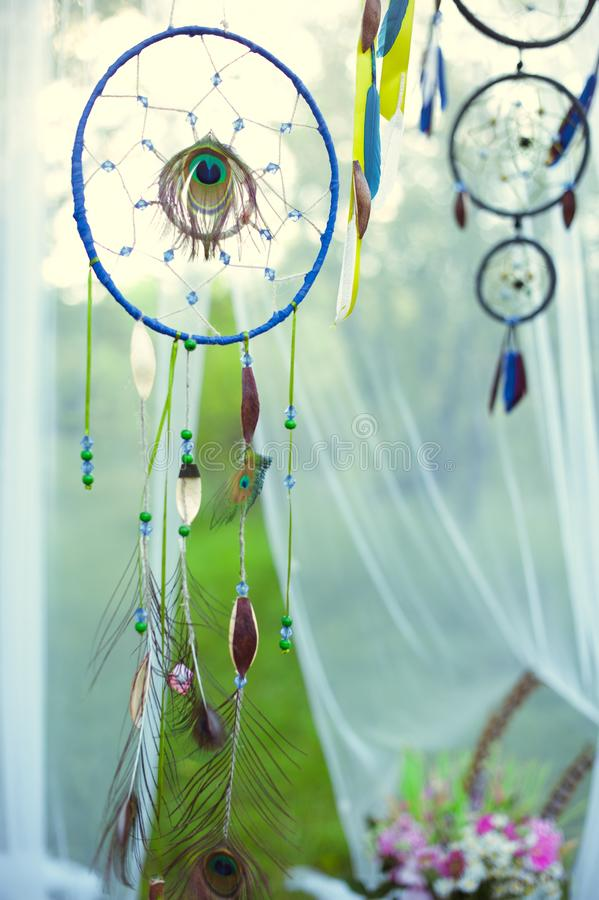 Dreamcatcher Pendants sur un arbre dans la for?t photographie stock libre de droits