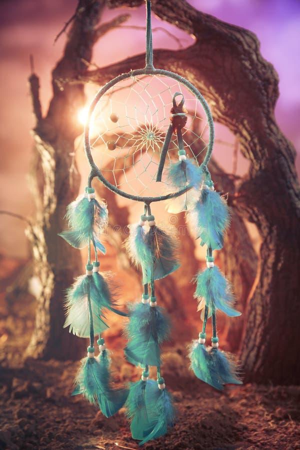 Dreamcatcher su una foresta al tramonto fotografia stock libera da diritti