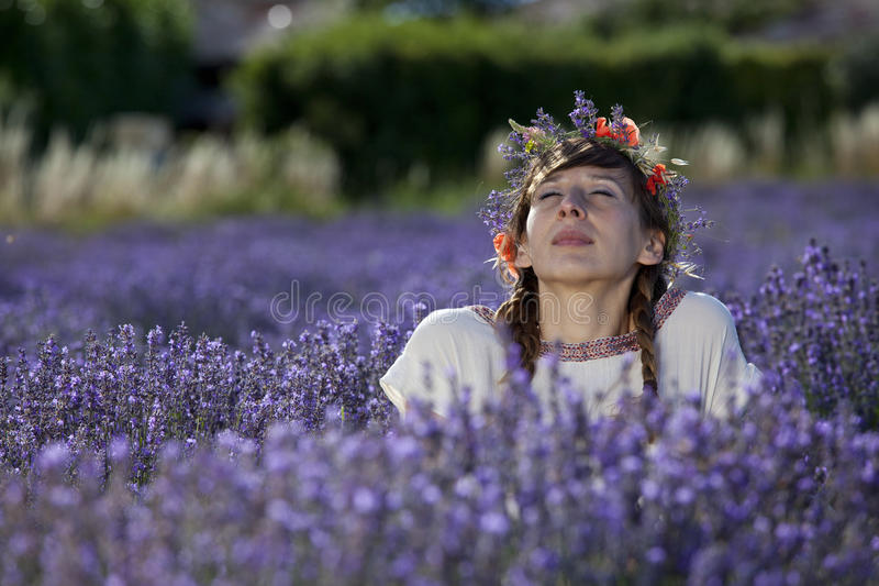 Dreaming woman in lavender field stock images