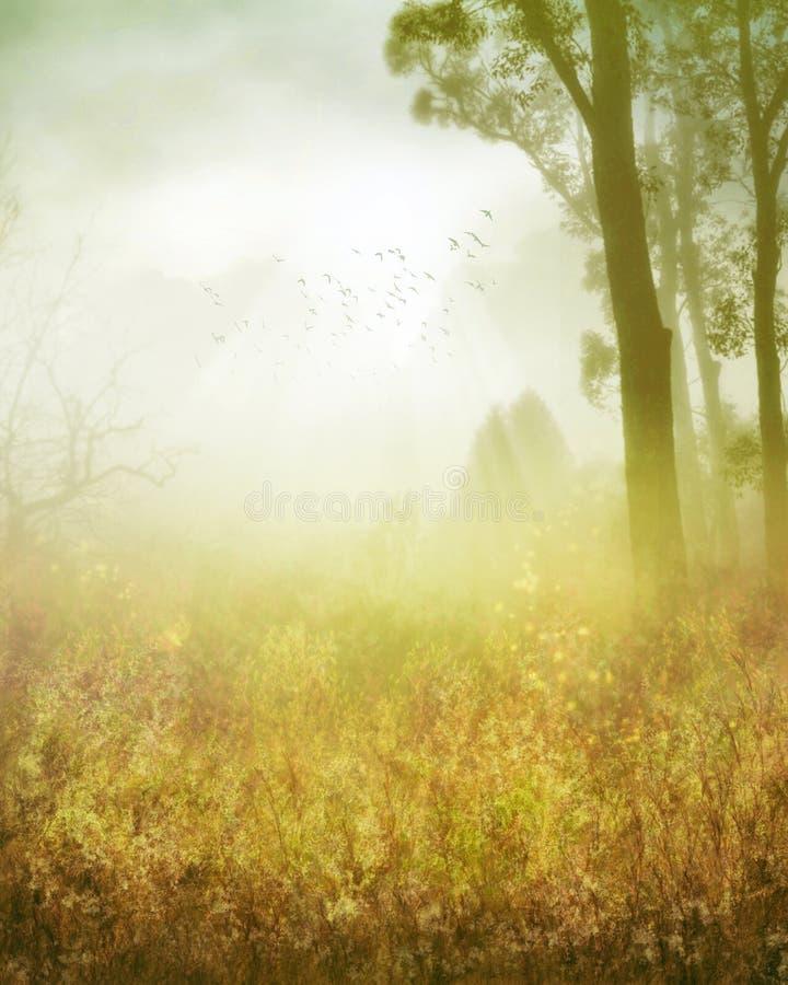 dreamland стоковые изображения rf