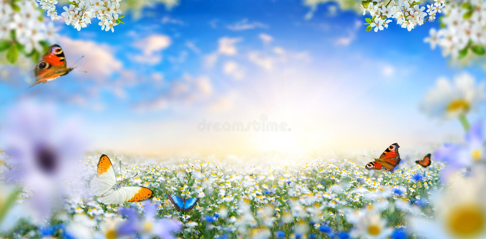Dreamland fantasy spring landscape with flowers and butterflies royalty free stock photography