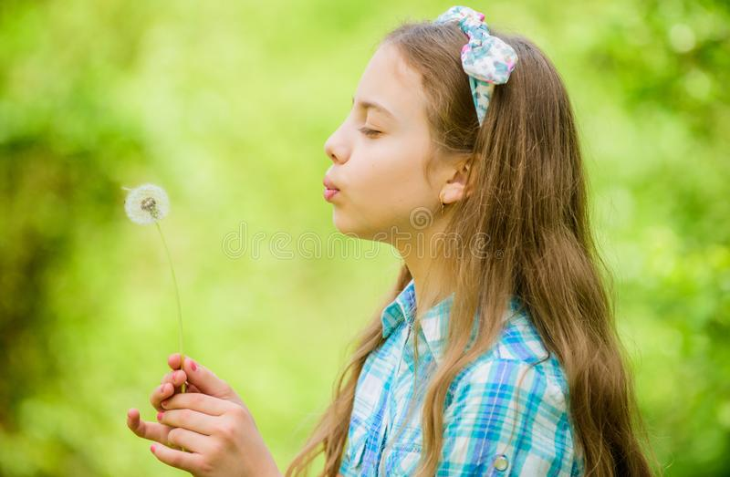 Dreams come true. Dandelion full symbolism. Summertime fun. Beliefs about dandelion. Girl making wish and blowing stock photo