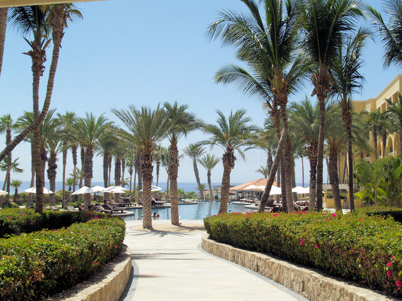 Dreams Los Cabos Suites Golf Resort and Spa in Mexico. Dreams Los Cabos Suites Golf Resort and Spa in Los Cabos, Mexico. Destination wedding at the beach, pool stock image
