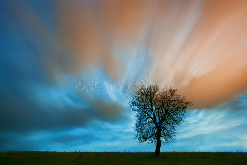 Dreamscape. Lonely tree on a field at night against dramatic sky with the moon illuminating the clouds from behind