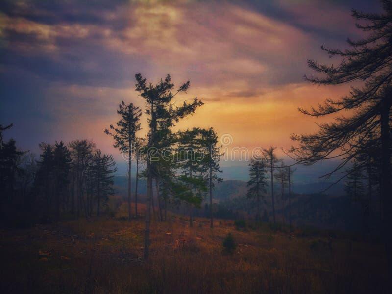 Dreamword in de berg royalty-vrije stock afbeelding