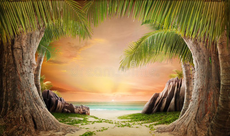 Dreamy beach landscape backgrund stock images