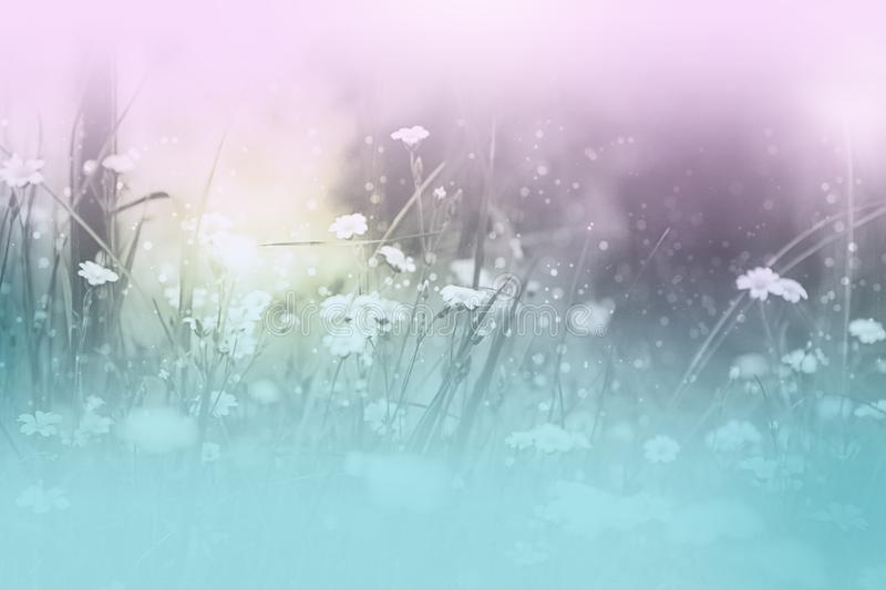 Download Dreamy floral theme stock illustration. Illustration of nature - 118263158