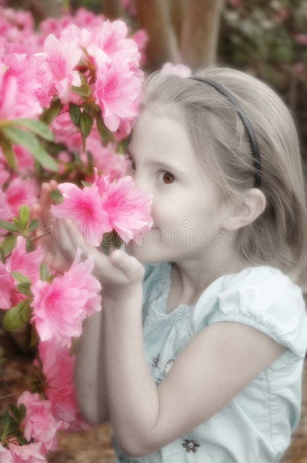 Dreamy Garden. Soft filter affect, black and white with hand tint to the flowers and slight desaturation make this a dreamy garden. Little girl holds flowers up royalty free stock photography