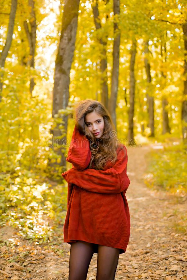 Dreamy girl with long hair in knit sweater. Beautiful fashion woman in autumn red dress with falling leaves over nature royalty free stock images