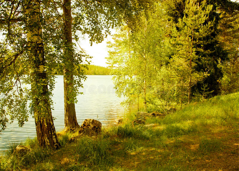 Dreamy landscape in Sweden. Texture conceptual image. royalty free stock photos