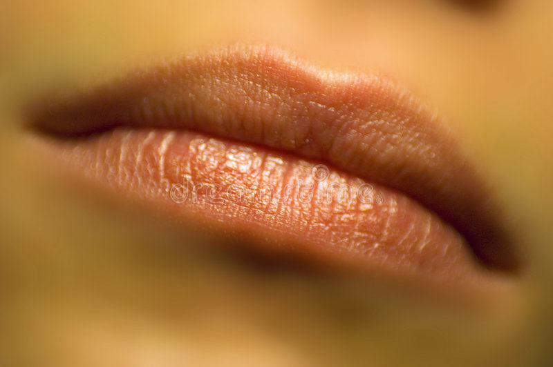 Dreamy Lips stock image
