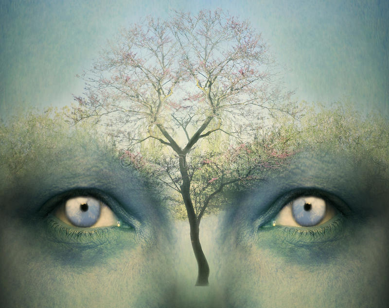 Dreamy mind. Beautiful artistic fantasy background representing a two human eyes and a tree royalty free stock images