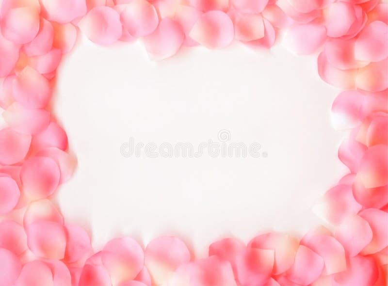 Dreamy Rose Petal Frame royalty free stock photos