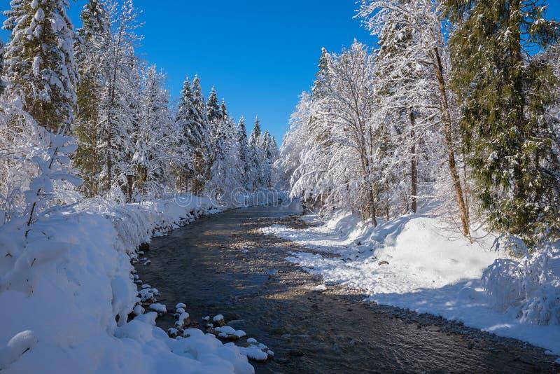 Dreamy winter landscape Weissach river near Kreuth, bavarian alps. Dreamy snowbound winter wonderland Weissach river near Kreuth, landscape bavarian alps stock photo