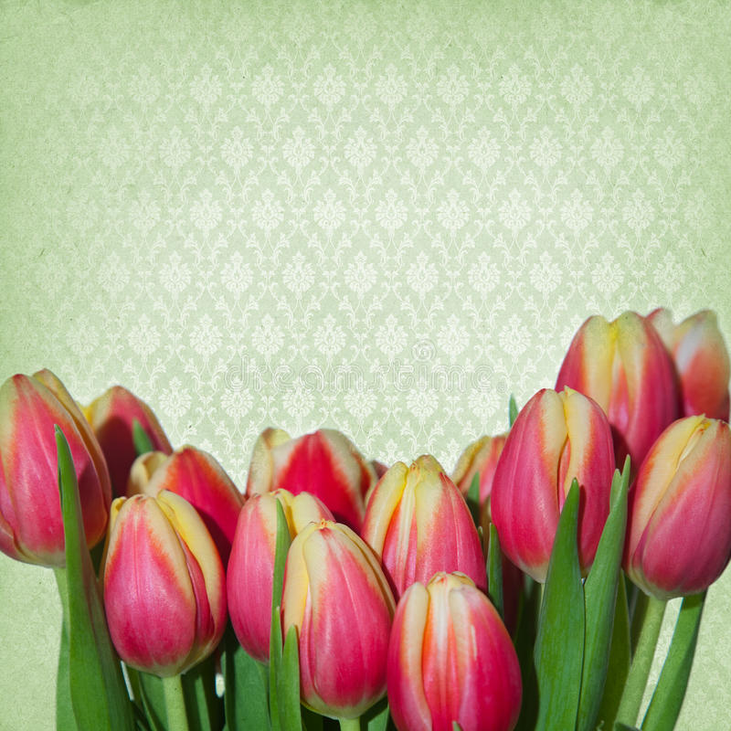 Download Dreamy Springflowers Background Stock Photo - Image of flowers, original: 39500456