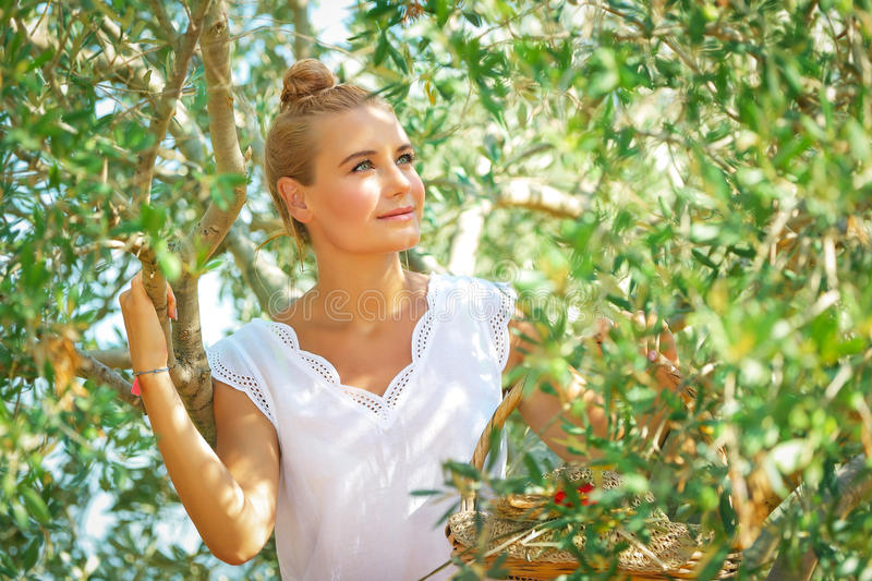 Dreamy woman in olive garden. Portrait of a nice blond dreamy woman enjoying nature of a countryside, girl walking in the olive garden, harvesting time in autumn stock photos