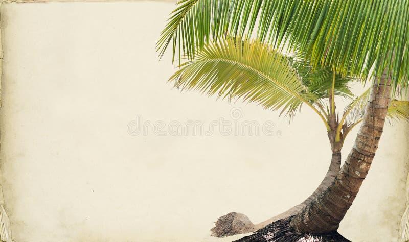 Download Drean Beach Paper Background Stock Photo - Image of restaurant, island: 39500044