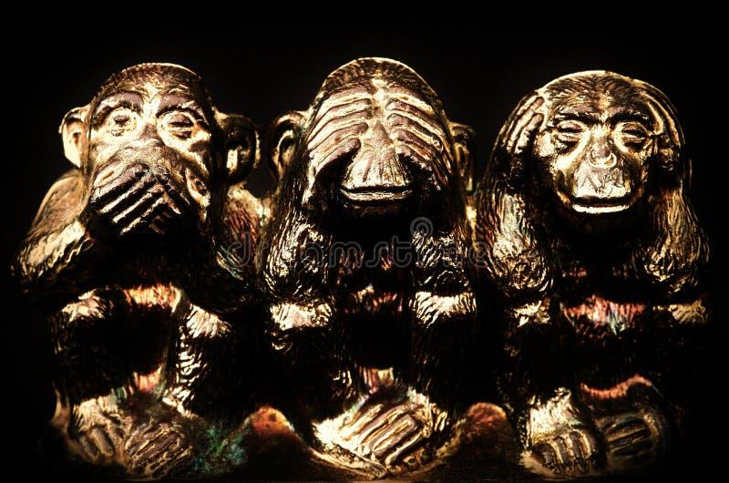 Drei Affen lizenzfreie stockfotos