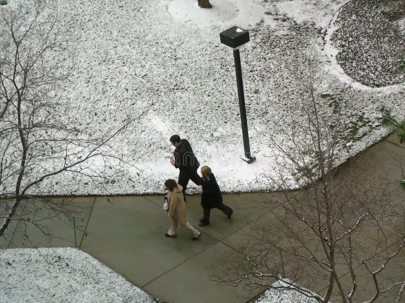 Drei Büroangestellte, die durch schneebedeckten Park gehen. stockfoto