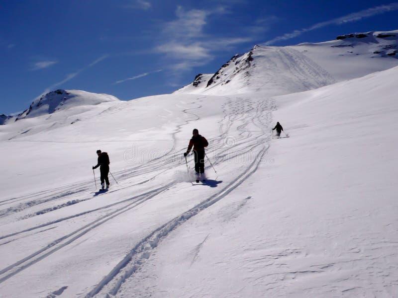Drei backcountry Skifahrer, die einen Skiabfall im frischen Pulver in den Schweizer Alpen enjyoing sind stockbild