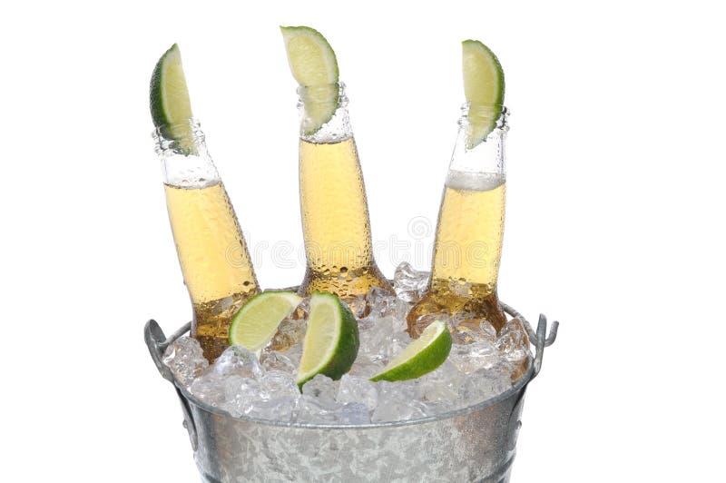 Drei Bierflaschen mit Kalken lizenzfreies stockbild