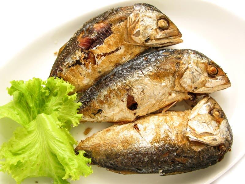 Drei brieten die Makrele, die in den Teller an der Küche des Restaurants eingesetzt wurde stockfotografie