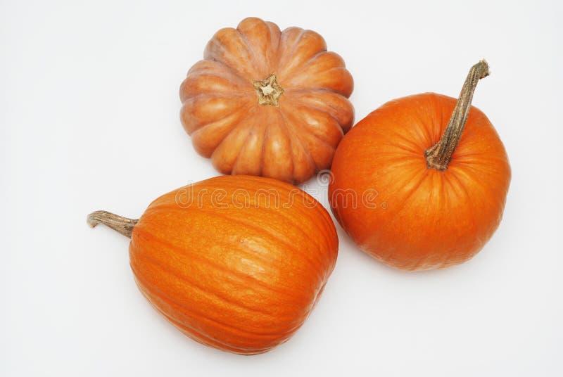 Drei dekorative orange Kürbise Halloween oder Autumn Fresh Pumpkins, lokalisiert auf weißem Hintergrund lizenzfreies stockbild