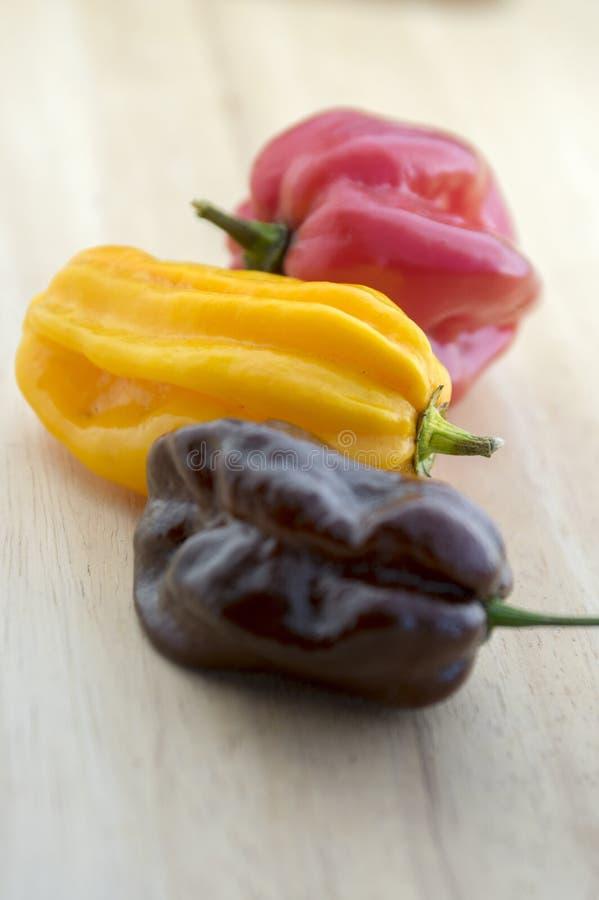 Drei des Habanero Pfeffer des scharfen Paprikas sehr, gereifte chinenses des spanischen Pfeffers auf Holztisch stockfotografie
