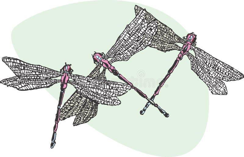 Drei Dragonflys vektor abbildung