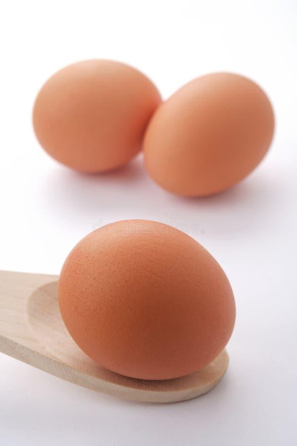 Drei Eier stockfoto