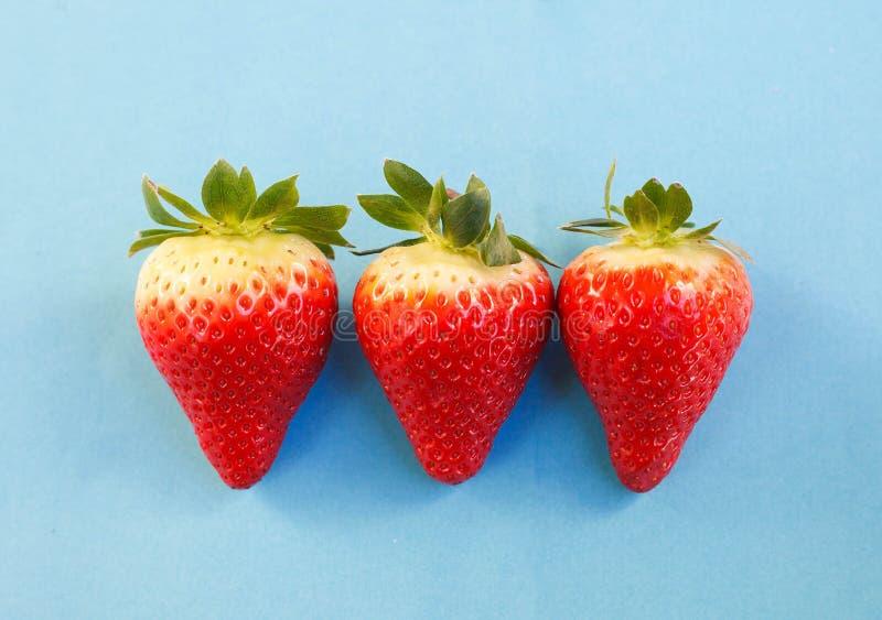 Drei Erdbeeren in Folge stockfotos