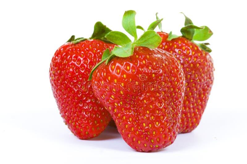 Drei Erdbeeren getrennt auf Weiß lizenzfreie stockbilder